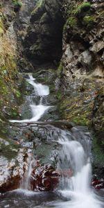 Valea_Hututeanca-PN_Mţii_Maramureşului